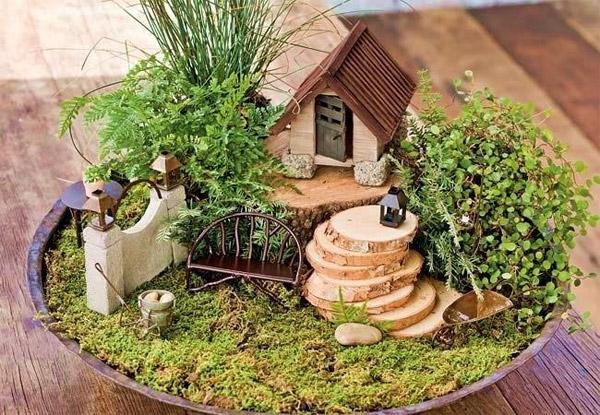 Kako napraviti minijaturni vrt